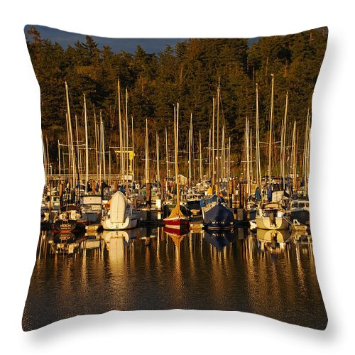 Marina Throw Pillow featuring the photograph Moored Sailboats by Jani Freimann