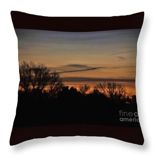 Desert Willow Trees Throw Pillow featuring the photograph Morning by Angela J Wright