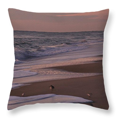 Beach Throw Pillow featuring the photograph Morning Birds At The Beach by Nadine Rippelmeyer