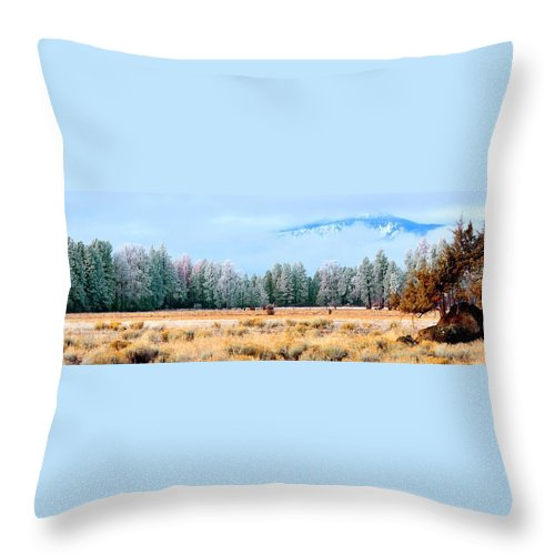 Pasture Throw Pillow featuring the photograph Morning Feed 21818 by Jerry Sodorff