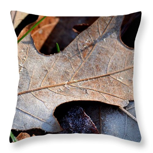 Morning Frost Throw Pillow featuring the photograph Morning Frost by Maria Urso
