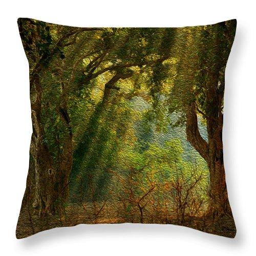 Light Throw Pillow featuring the photograph Morning Glory by Manjot Singh Sachdeva