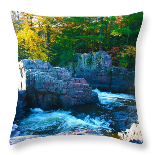 Eau Claire Dells Throw Pillow featuring the photograph Morning In Eau Claire Dells by Tiffany Erdman