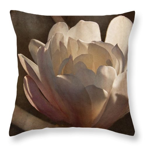 Magnolia Throw Pillow featuring the photograph Morning Magnolia Blossom by Theo O'Connor