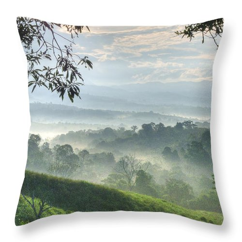 Landscape Throw Pillow featuring the photograph Morning Mist by Heiko Koehrer-Wagner