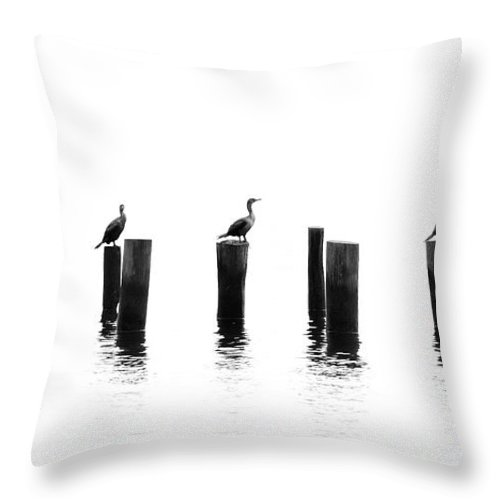 Panoramic Throw Pillow featuring the photograph Morning Reflections by Chris Moore - Exploring Light Photography