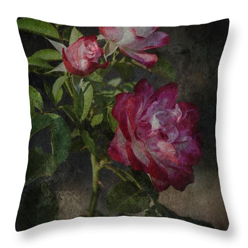 Nature Photography Throw Pillow featuring the photograph Morning Roses by Bonnie Bruno
