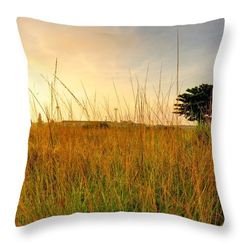 Scenics Throw Pillow featuring the photograph Morning Sun Shining Through The Tree by Primeimages
