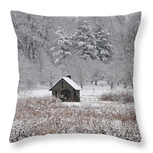 Morris Arboretum Mill In Winter Throw Pillow featuring the photograph Morris Arboretum Mill In Winter by Bill Cannon