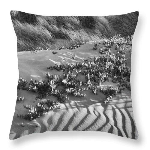 Beach Throw Pillow featuring the photograph Morro Beach Textures Bw by Terry Garvin