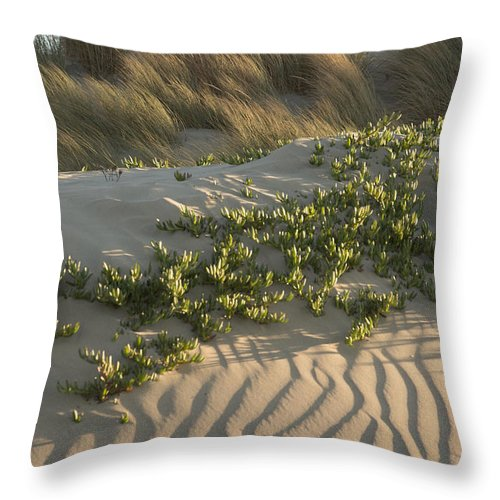 Morro Bay Throw Pillow featuring the photograph Morro Beach Textures by Terry Garvin