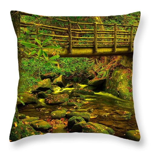 Moss Throw Pillow featuring the photograph Moss Bridge by Mary Young
