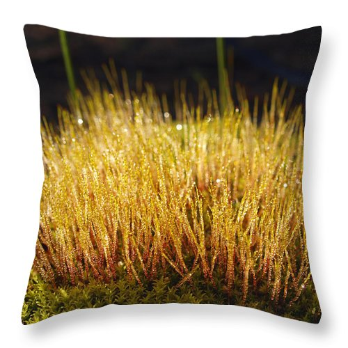 Moss Throw Pillow featuring the photograph Moss Mat by Michaela Perryman