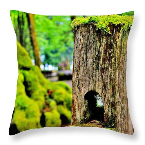 Moss Throw Pillow featuring the photograph Mosspost by Benjamin Yeager