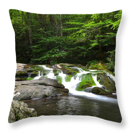 Moss Throw Pillow featuring the photograph Mossy Falls by Frozen in Time Fine Art Photography