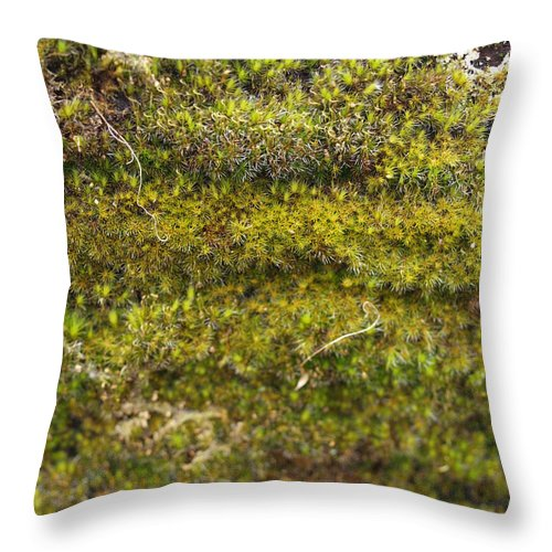 Green Throw Pillow featuring the photograph Mossy Green by Michaela Perryman