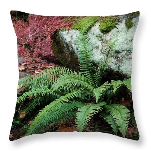 Moss Throw Pillow featuring the photograph Mossy Rock And Fern by Patricia Strand