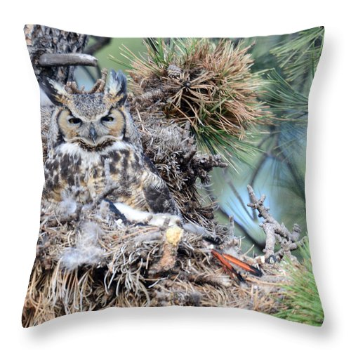 Estes Park Throw Pillow featuring the photograph Mother Owl by Erika Weber