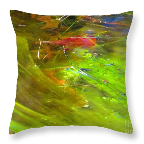 Photography Throw Pillow featuring the photograph Mothers abstract 05 by Rrrose Pix