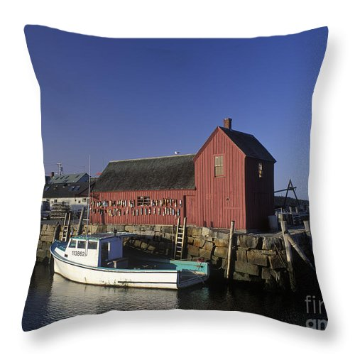 Lobster Throw Pillow featuring the photograph Motif Number 1 - Fm000069 by Daniel Dempster