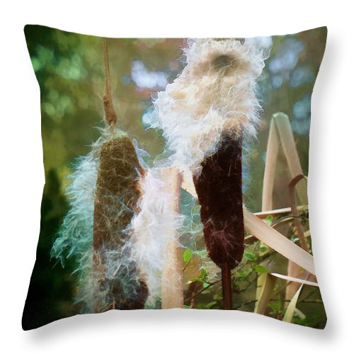 Cattail Throw Pillow featuring the photograph Moulting by Steve Taylor