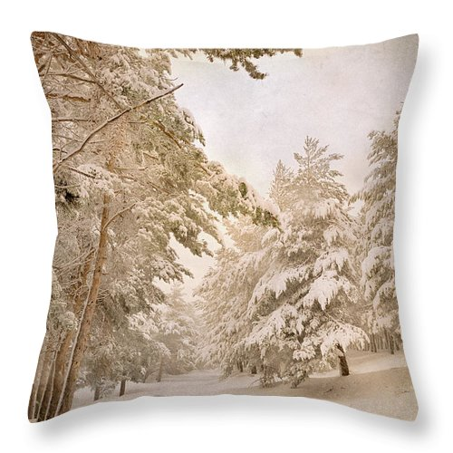 Landscapes Throw Pillow featuring the photograph Mountain Adventure In The Snow by Guido Montanes Castillo
