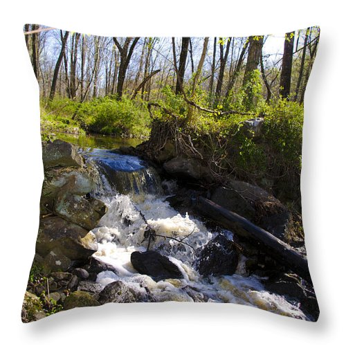 Mountain Throw Pillow featuring the photograph Mountain Creek In Spring by Bill Cannon