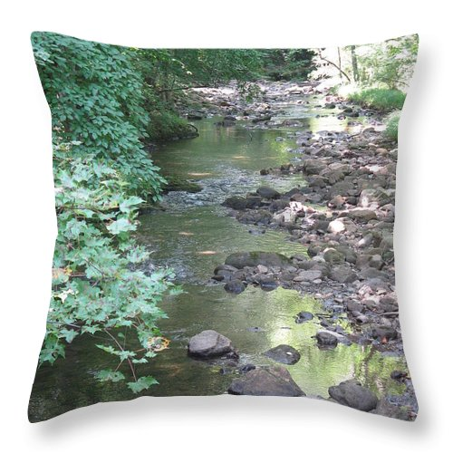 Creek Throw Pillow featuring the photograph Mountain Creek by Mike Niday