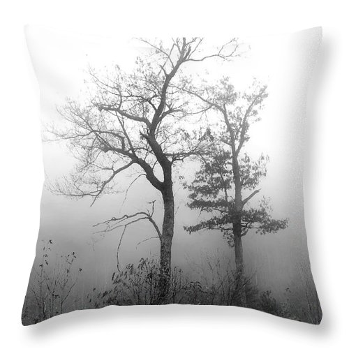 Pisgah National Forest Throw Pillow featuring the photograph Mountain Mist by Jeff McJunkin