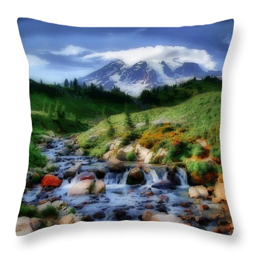 Mountain Throw Pillow featuring the photograph Mountain Stream by Kelly Bryant