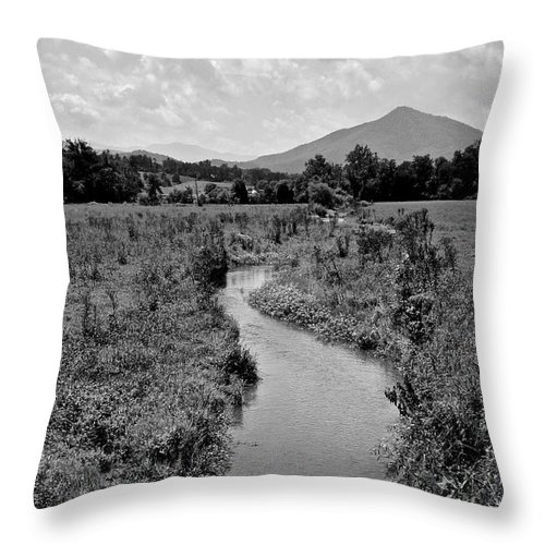 Mountains Throw Pillow featuring the photograph Mountain Valley Stream by Frozen in Time Fine Art Photography