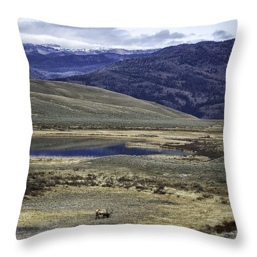 Mountains Throw Pillow featuring the photograph Mountain View by Carolyn Fox