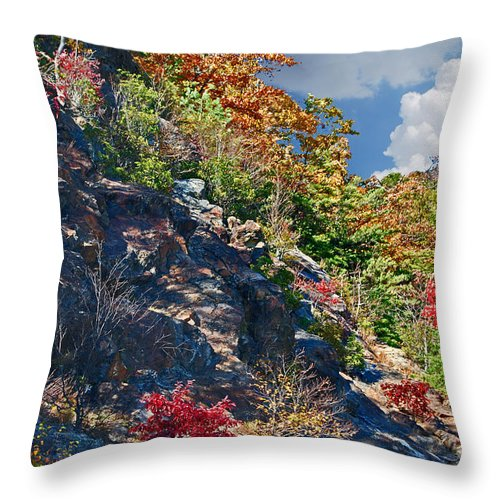 Scenic Tours Throw Pillow featuring the photograph Mountains by Skip Willits
