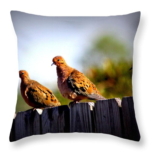 Fence Throw Pillow featuring the photograph Mourning Doves On Fence by Travis Truelove