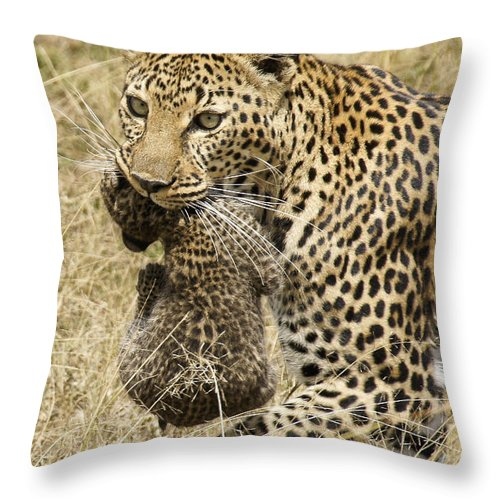 Africa Throw Pillow featuring the photograph Moving Day by Michele Burgess