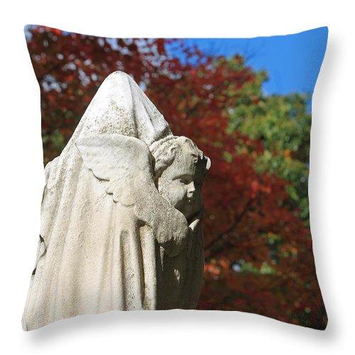 Mt Auburn Cemetery Throw Pillow featuring the photograph Mt Auburn Cemetery 8 by Michael Saunders
