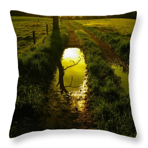 Mudhole Throw Pillow featuring the photograph Mudhole Mirror by Nick Kirby