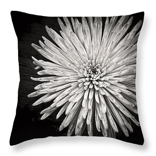 Flower Throw Pillow featuring the photograph Mum's The Word by Kristi Swift