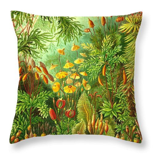 Muscinae Throw Pillow featuring the digital art Muscinae by Unknown