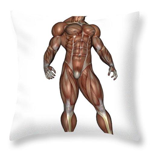 Muscle Throw Pillow featuring the digital art Muscular Man Standing by Elena Duvernay