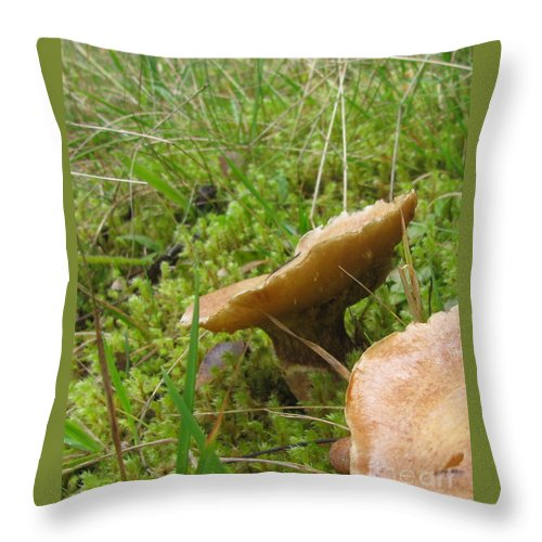 Mushroom Throw Pillow featuring the photograph Mushroom In Grass by Leone Lund
