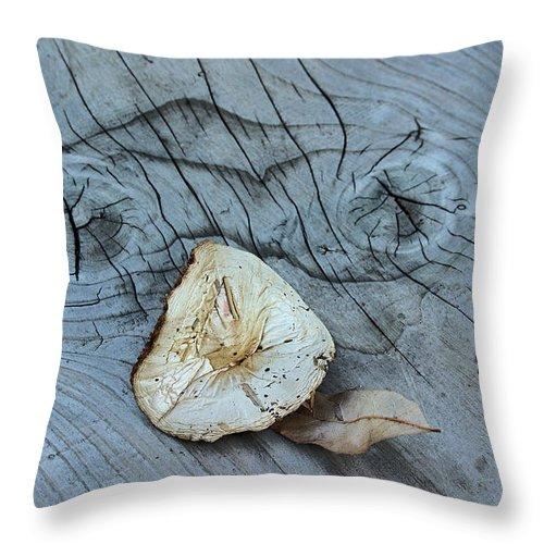 Mushroom On Wooden Plank Throw Pillow featuring the photograph Mushroom On Wooden Plank by Viktor Savchenko