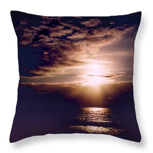 Seascape Throw Pillow featuring the photograph Mushroom by Steve Karol