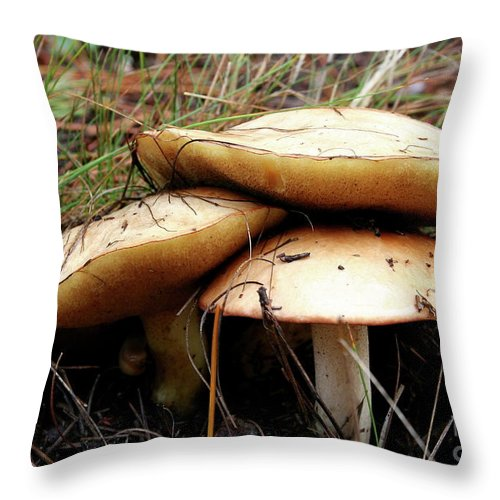 Mushrooms Throw Pillow featuring the photograph Mushrooms by Christiane Schulze Art And Photography