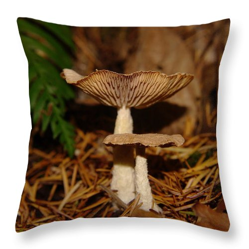Mushroom Throw Pillow featuring the photograph Mushrooms by Jeff Swan