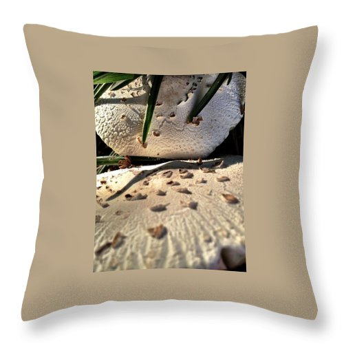 Mushrooms Throw Pillow featuring the photograph Mushrooms by Michele Monk