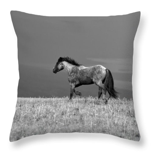 Beautiful Throw Pillow featuring the photograph Mustang 2 Bw by Roger Snyder