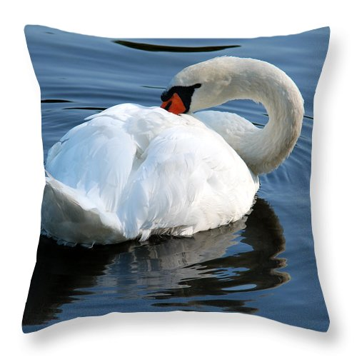 Swan Throw Pillow featuring the photograph Mute Swan No. 2 by Janice Adomeit