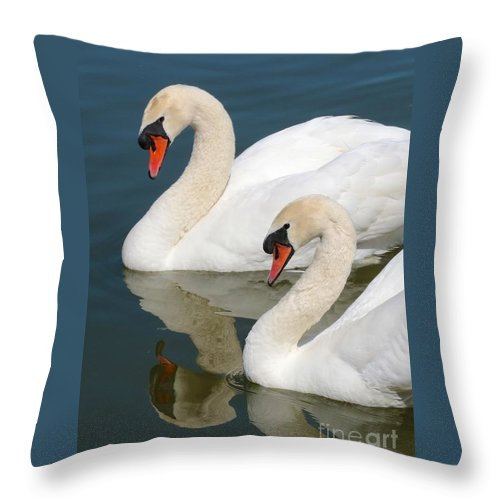 Swan Throw Pillow featuring the photograph Mute Swan Pair Profile by Carol Groenen