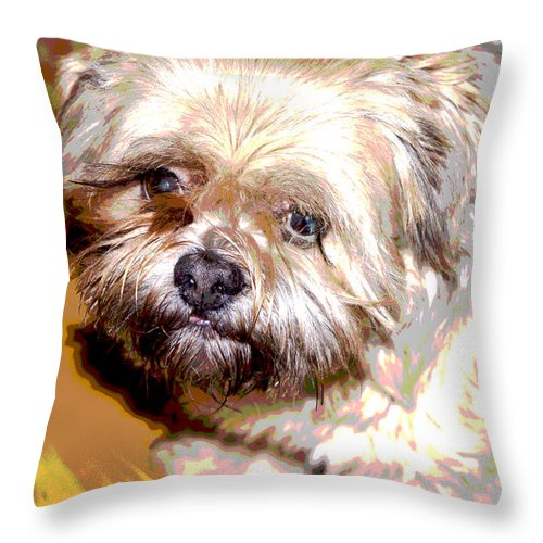 Digital Photo Throw Pillow featuring the photograph My Friend Lhasa Apso by Sergey Bezhinets